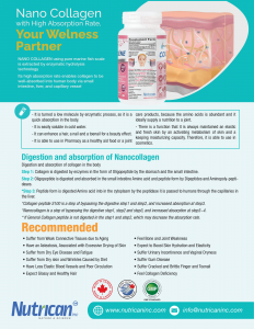 Collagen Brochures US Letter Back-1-min